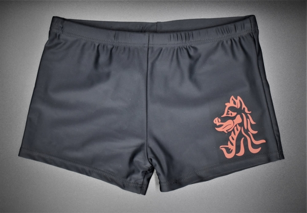 Beech Hall Boys Swim Shorts