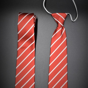 Beech Hall Junior School Tie